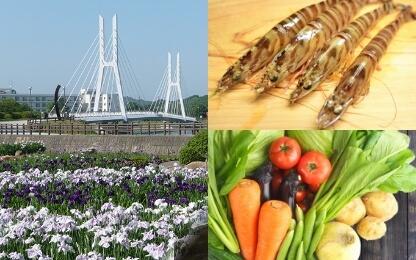 宇部市の特産品・観光スポットの写真(ときわ公園菖蒲園、くるまえび、新鮮な野菜)